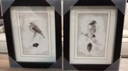 A122-Duo of Black & White Bird Sketches