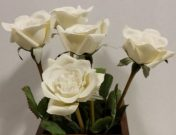 PLS16-1/2 dozen white silk roses