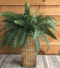 PLT11-Fern in Metal Pot, 27″high
