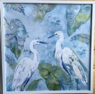 A15a-Pelicans in Water, White Frame