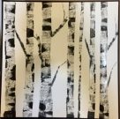 A10b-B&W Birch Forest, Framed