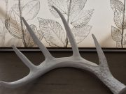 Decorative Antler, White Resin-Acc410