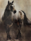 A110c-Canvas Majestic Stallion, Med
