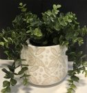 PL08b-Weeping Ivy, beige ceramic pot