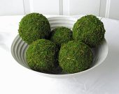 Kitchen, Pkg of Moss Balls-Acc034