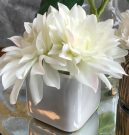 PL48-Pointed Flowers, White Sq. Pot