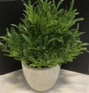 PL12c-Green Grass, Grey Concrete Pot