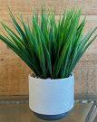 PL32a-Grass, White & Grey Pot