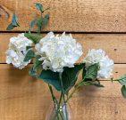 PLS00a-Single, White Hydrangea Stems
