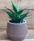 PL55b-Mini Aloe Plant, brown textured pot